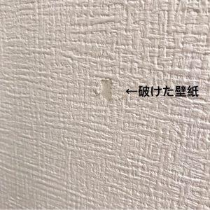 壁紙の破れ隠しに モザイクタイルシール